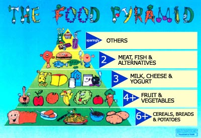 13383718717780_food-pyramid-children.jpg