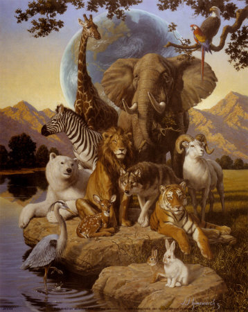 animals(9).jpg