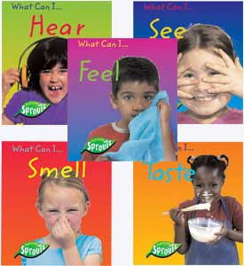 five_senses_2.jpg