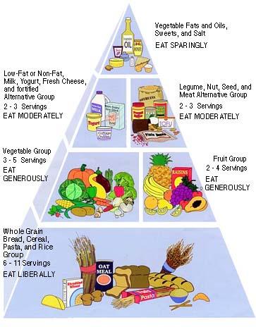 food_pyramid(3).jpg