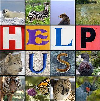 help_us_picture(1).jpg