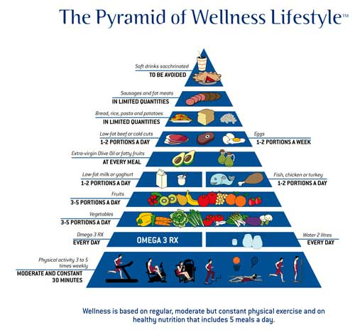 Health, Fitness, And Wellness