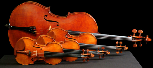 Favorite String Instrument