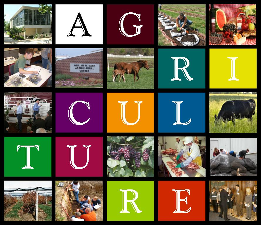 Agriculture Throughout The Years
