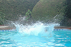 splash1(1).jpg