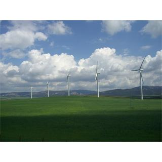 wind_power_in_tarifa_photo.jpg