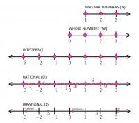 Number Lines of the Real Number System<br>