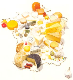 Les Fromages Français Et Leurs Régions / French Cheeses And Their Regions