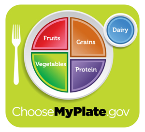 The New Usda Food Plate