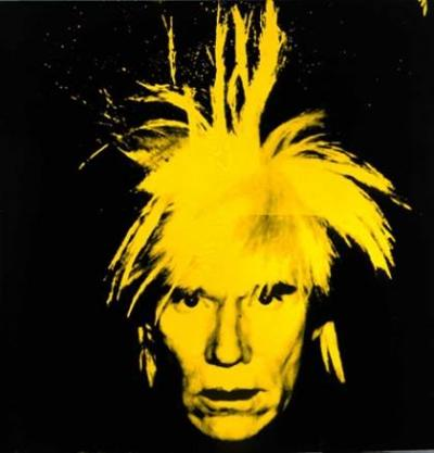 Andy Warhol The Pop Artist Pro
