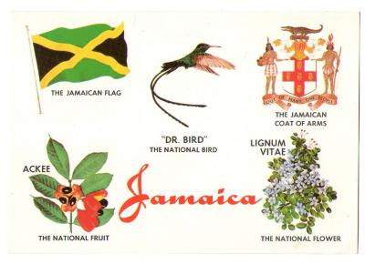 Knowing Our Jamaican Symbols :)