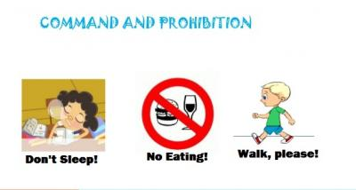 Command And Prohibition Expressions