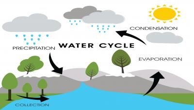 水循環:水從�<br />�而來?the Water Cycle: Where Does The Water Come From?