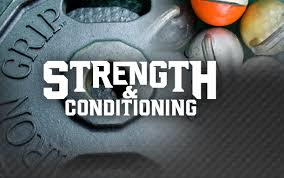 Strength And Conditioning Webquest