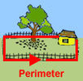 Understanding Measurement Using Perimeter