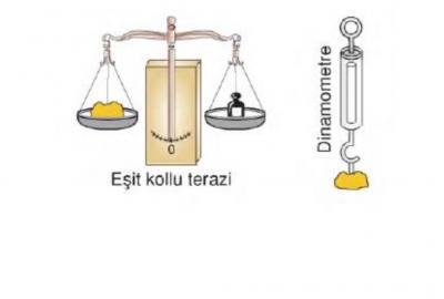 Mass And Weight Relation