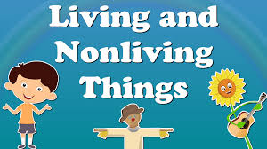 Living And Non- Living Things
