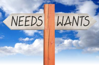 What Are Needs And Wants?