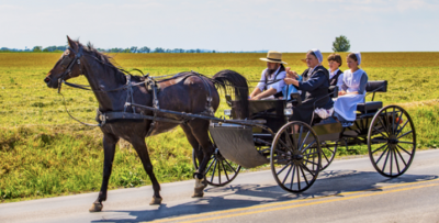 In What Ways Are The Amish Still A Folk Culture?