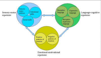Cognitive Psychology, Behaviorism, And Social Cognitive Theory
