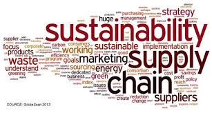 Sustainability And Ethics In Supply Chain