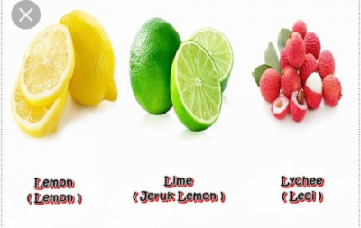 Learn English Speaking Fruit Names  By Coloring