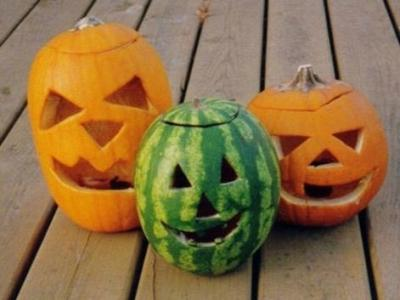 Let'S Discover How Pumpkins And Watermelons Grow